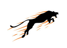 Silhouette Cheetah, Panther, design using black line square, graphic . Stock Images