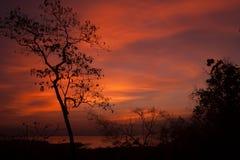 Silhouette chez Huay Mae Kamin Image libre de droits
