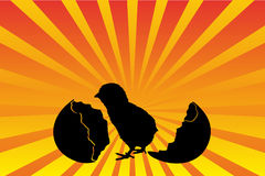 Silhouette of a chicken and an egg hatching. Stock Photo