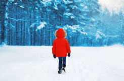Silhouette of child walking in winter forest Stock Images