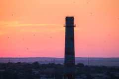 Silhouette of a chimney with flying birds at sunset. Colorful red sky. Industrial landscape. Stock Image