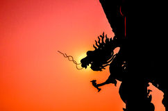 Silhouette Chinese dragon Stock Images