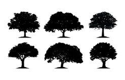 Silhouette Cliparts de chêne illustration de vecteur