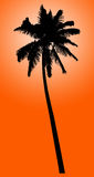 Silhouette of coconut palm isolated on orange Stock Images