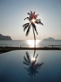 Silhouette coconut palm tree. With tropical beach in Thailand Stock Photo