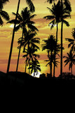 Silhouette coconut tree at sunset Stock Image