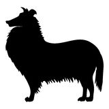Silhouette of collie Stock Image