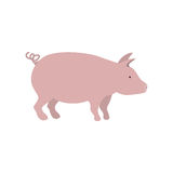 Silhouette color with pink pig Royalty Free Stock Photos