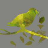 Silhouette of colorful bird with flower Royalty Free Stock Photos