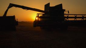 Silhouette of combine harvester pours out wheat into the truck at sunset. Harvesting grain field, crop season. Beautiful natural aerial landscape stock video footage