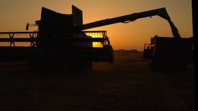 Silhouette of combine harvester pours out wheat into the truck at sunset. Harvesting grain field, crop season. stock video footage