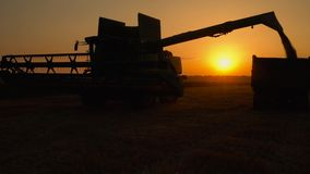Silhouette of combine harvester pours out wheat into the truck at sunset. Harvesting grain field, crop season. Beautiful natural aerial landscape stock video