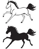 Galloping horse Stock Photo
