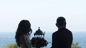 Silhouette of the couple Groom and Bride holding hands and looking forward stock footage