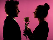 Silhouette of a couple and the rose Stock Photos