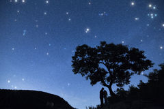 Silhouette couple  under  a tree and enjoying starry sky in nights cape Royalty Free Stock Photos