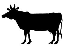 Silhouette of cow Stock Photography
