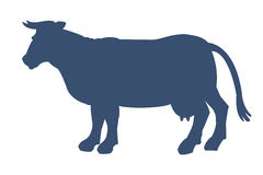 Silhouette of cow  on white background. Royalty Free Stock Photography