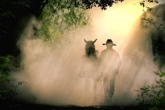 Silhouette of the cowboy and the horse in the morning sunrise royalty free stock image
