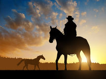 Silhouette cowboy with horse. In the sunset Stock Images