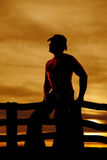 Silhouette cowboy no shirt Royalty Free Stock Images