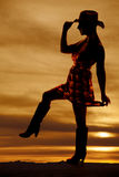 Silhouette cowgirl side step up Stock Images