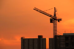 Silhouette Crane on Sunset Background Royalty Free Stock Image