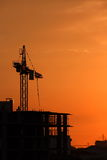 Silhouette Crane on Sunset Background Royalty Free Stock Photo
