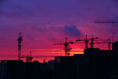 Silhouette of cranes. On sunset sky background Stock Photo