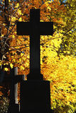 Silhouette cross at a cemetery on the background of yellow leave Royalty Free Stock Photography