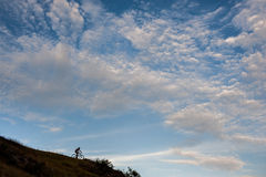 Silhouette of a cross country cyclist going downhill Stock Images