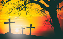 Silhouette of cross of Jesus Christ with big tree on backlight a. T sunset. Add old film effect filtered. Vintage color tone Stock Photos
