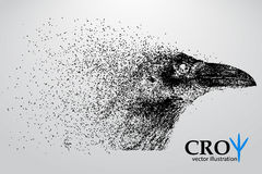 Silhouette of a crow from particles. Stock Image