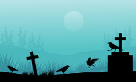 Silhouette of crow and tomb Halloween with fog Royalty Free Stock Photography