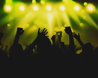 Silhouette crowds during a musical performance Stock Images