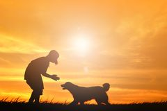 Silhouette cute girl and dog. Playing at sky sunset in holiday Stock Photos