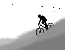 Silhouette cycling young woman in nature Royalty Free Stock Photos
