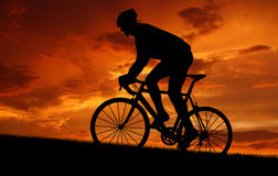 Silhouette of the cyclist Royalty Free Stock Photography