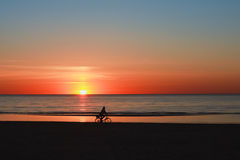 Silhouette of a cyclist on the beach at sunset Stock Photography