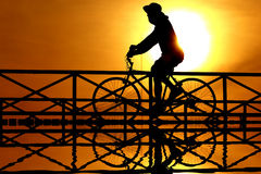 Silhouette of a cyclist . Royalty Free Stock Photography