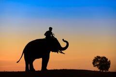 Silhouette d'éléphant au coucher du soleil Images libres de droits