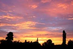 Silhouette d'arbre contre le coucher du soleil de l'hiver Photos stock