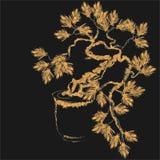 Silhouette d'arbre de bonsaïs avec le fond triangulaire Photographie stock libre de droits