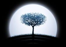 Silhouette d'arbre de lune Images stock