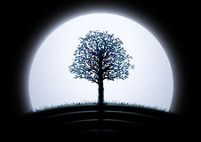Silhouette d'arbre de lune Image stock