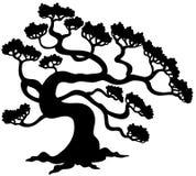 Silhouette d'arbre de pin Photographie stock libre de droits