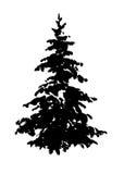 Silhouette d'arbre de sapin d'isolement sur le blanc image libre de droits
