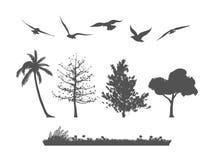 Silhouette d'arbre forestier, d'oiseaux et d'herbes Photos libres de droits
