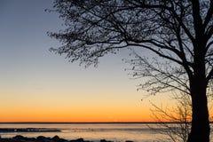 Silhouette d'arbre par un ciel coloré Photographie stock libre de droits