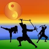 Silhouette d'arts martiaux Image libre de droits